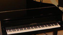 3-gran-piano