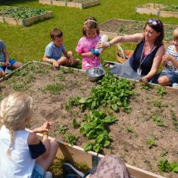 Elementary Outdoor Education